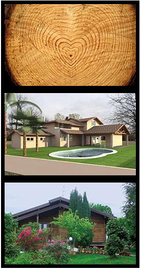 il-legno-nello-costruzioni-di-case-bio-compatibili-ecologiche